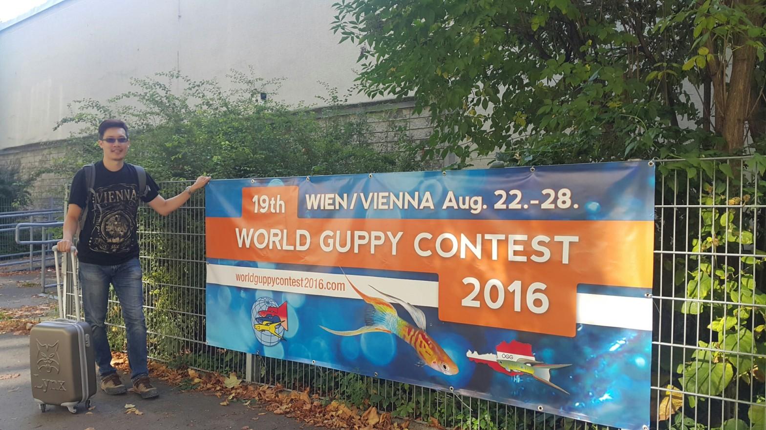 2016 Vienna World Guppy Contest, Gary Lee